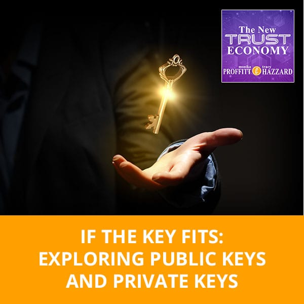 If The Key Fits: Exploring Public Keys And Private Keys