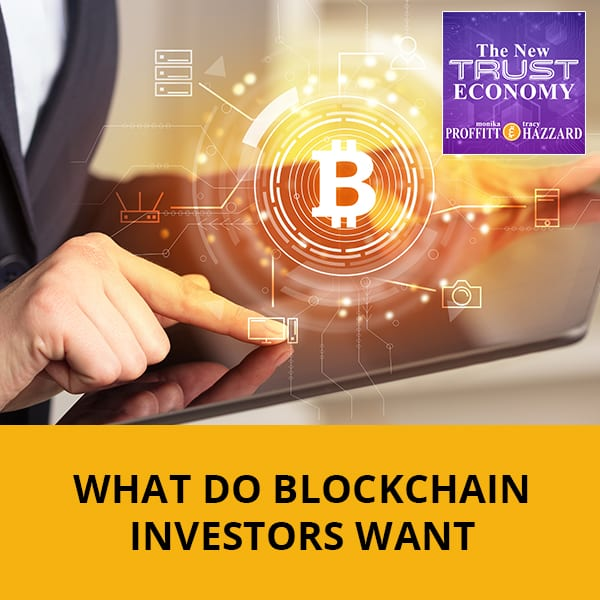 What Do Blockchain Investors Want